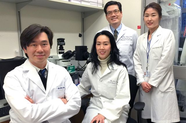 Mice headed for space to test bone-building drug developed by UCLA team