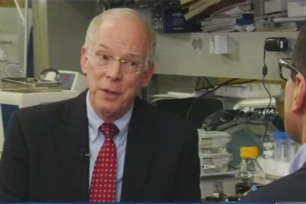 Creating safer batteries for the future: KNBC interviews Professor Bruce Dunn