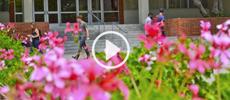 freshmen_video_230x100