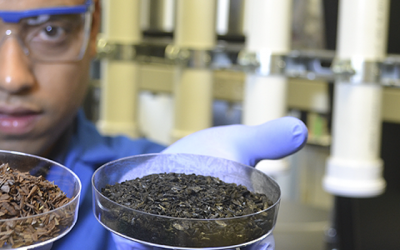 A Cleaner Water Supply Thanks to Waste Materials and Fungi