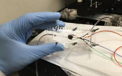 UCLA engineer develops 3D printer that can create complex biological tissues