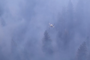 Uses drone sensing in prescribed burns to prevent wildfires