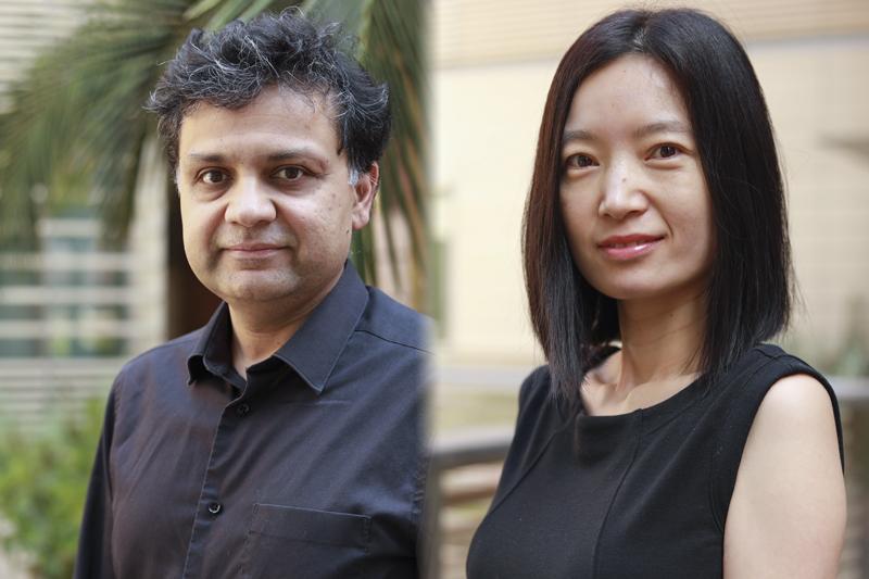 Suhas Diggavi and Yizhou Sun