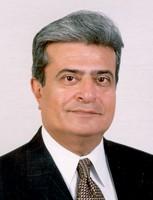 Madni 2011