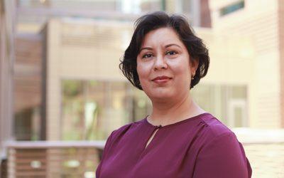 Civil and environmental engineering professor receives major international honor