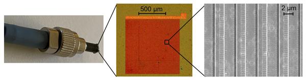fabricated nanoantenna array