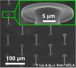 Microscope views of the UCLA researchers' superomniphobic surface.