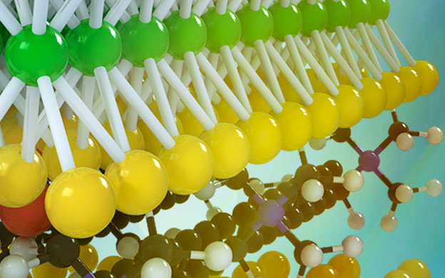 UCLA researchers develop a new class of two-dimensional materials